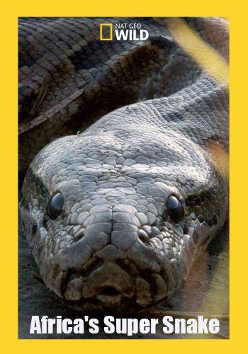 Африканская суперзмея - Africa's Super Snake
