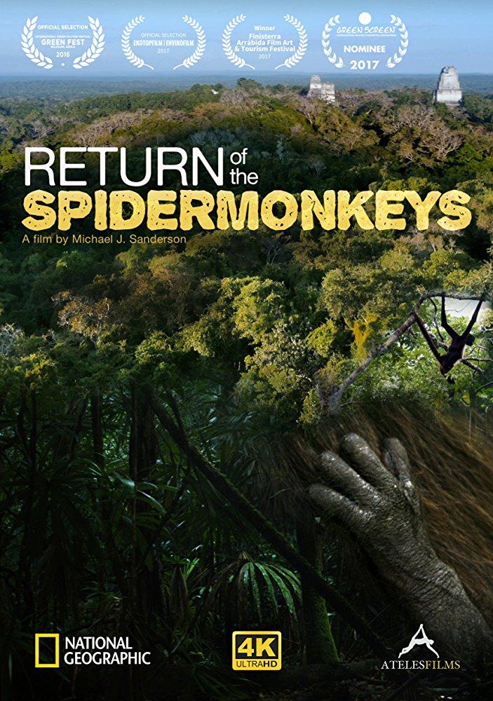 Возвращение паукообразных обезьян - Return of the spidermonkeys