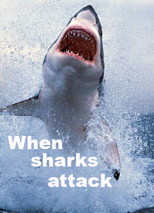 Когда акулы нападают - When sharks attack
