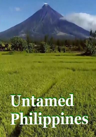 Дикая природа Филиппин - Untamed Philippines. Enchanted islands