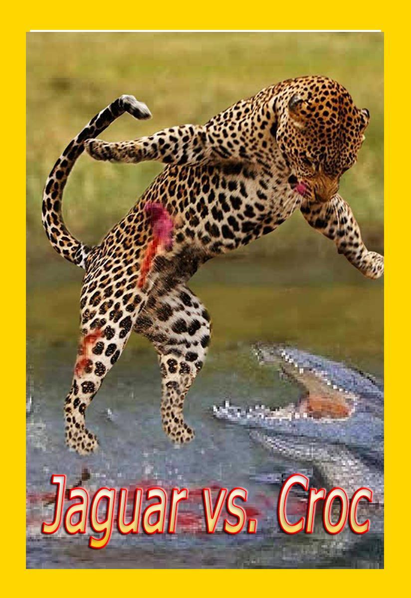 Ягуары против крокодилов - Jaguar vs. Croc