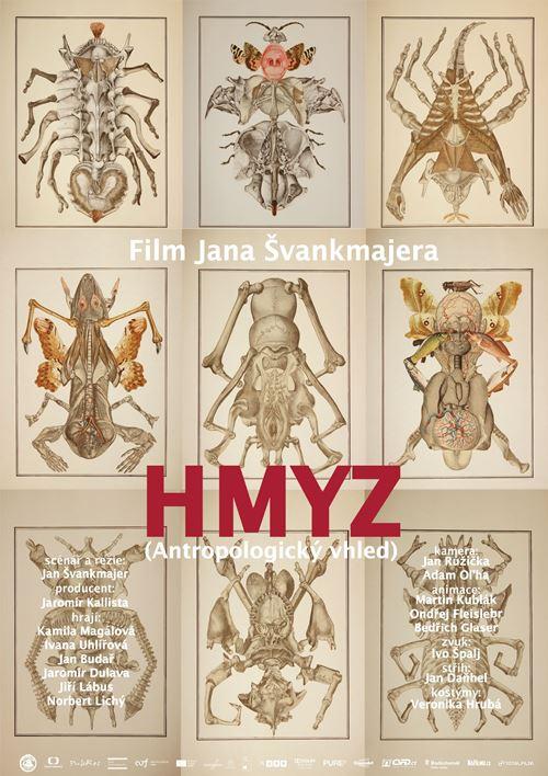 Насекомые - Hmyz