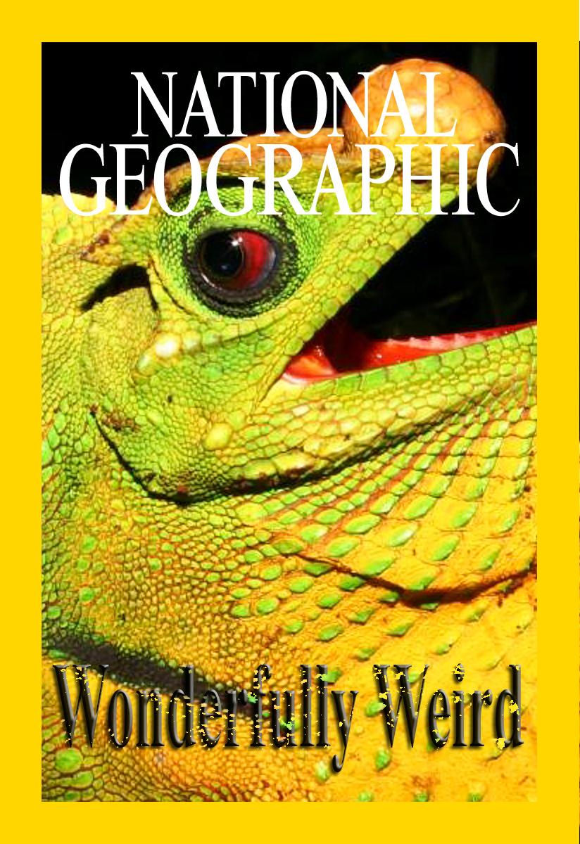 Мир необычного и странного - Wonderfully Weird