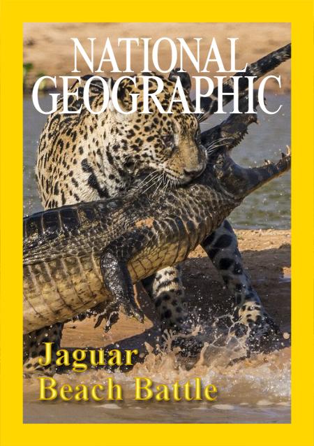 Охота ягуара на побережье - Jaguar Beach Battle