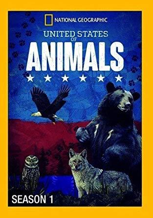 Соединенные Штаты Животных - United States of Animals