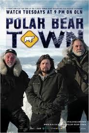 Город полярных медведей - Polar bear town