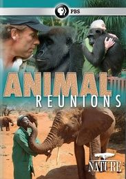 Встречи старых друзей - Wild Animal Reunions