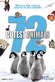 72 самых милых животных - 72 Cutest Animals
