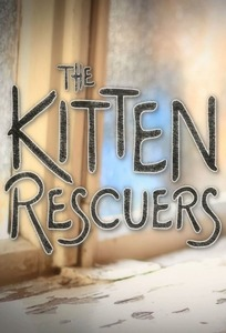 Спасители котят - The Kitten Rescuers