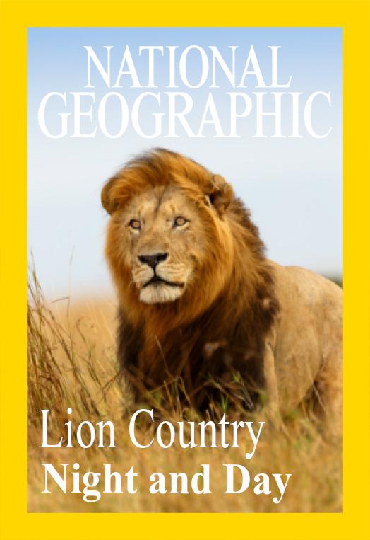 Львиная страна: ночь и день - Lion Country- Night and Day