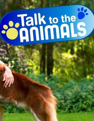 Разговор с животными - Talk to the Animals