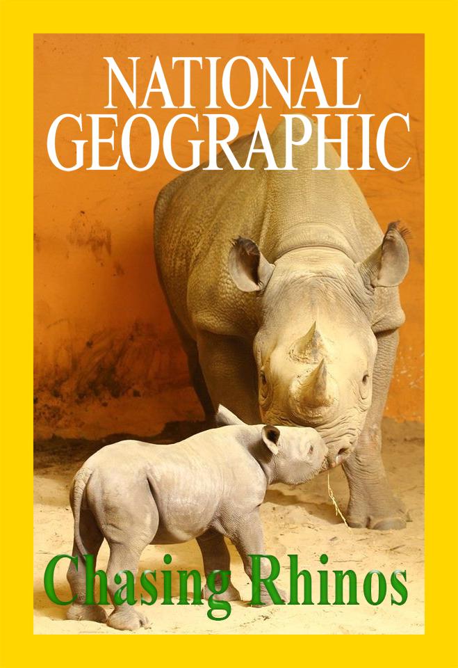 На защите носорогов - Chasing Rhinos