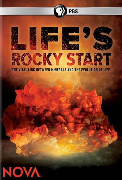 Каменное начало жизни - Life°s Rocky Start