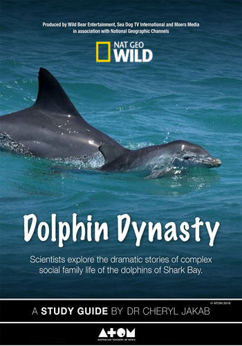 Династия дельфинов - Dolphin Dynasty