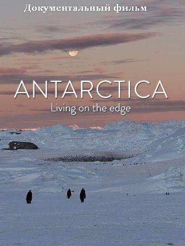 Антарктика. Живущие на грани - Antarctica. Living on the edge