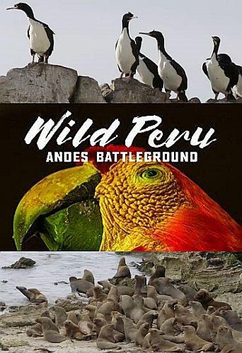 Дикая природа Перу: арена боев - Анды - Wild Peru- Andes Battleground