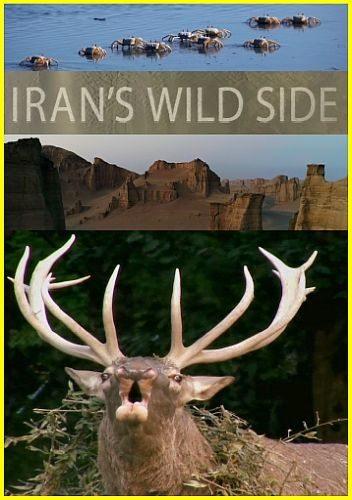 Дикие места Ирана - Iran°s Wild Side