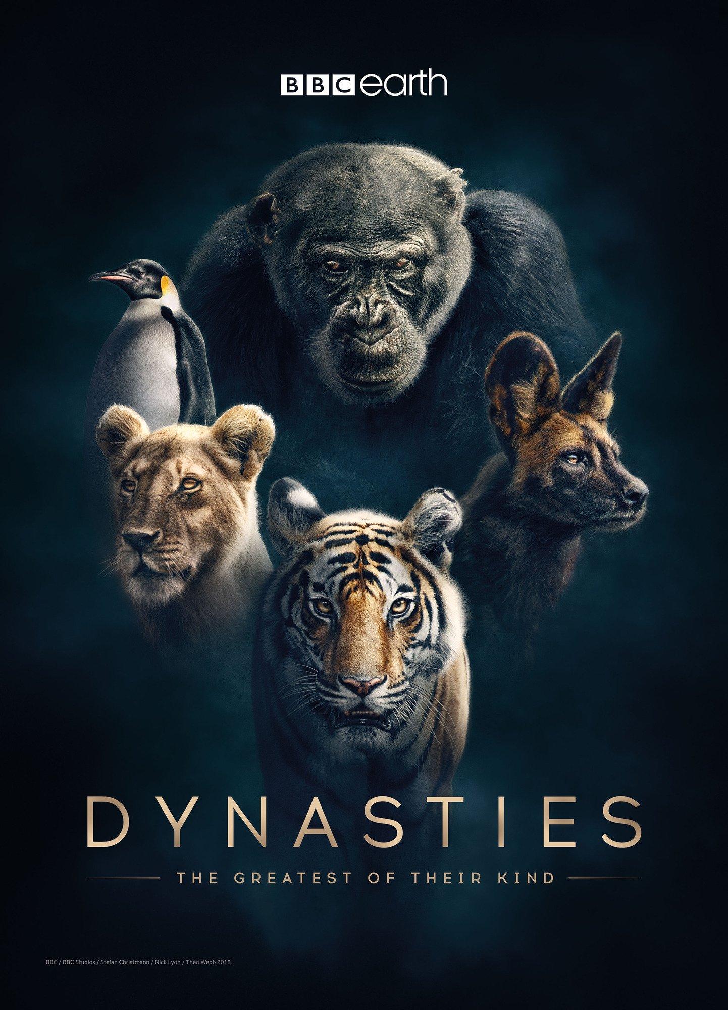 Династии - Dynasties