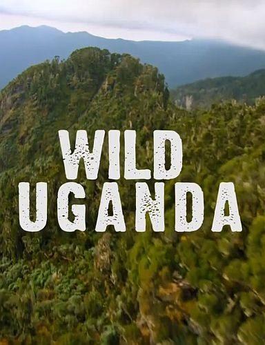 Дикая Уганда - Wild Uganda