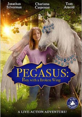 Пони с перебитым крылом - Pegasus- Pony with a Broken Wing