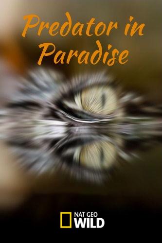 Хищник в раю - Predator in Paradise
