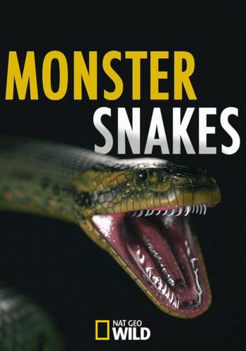 Змеи-монстры - Monster Snakes