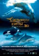 Дельфины и киты - (Dolphins and Whales 3D: Tribes of the Ocean)