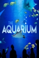 Океанариум - The Aquarium